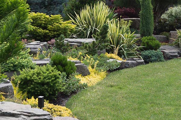 landscapes and hardscapes